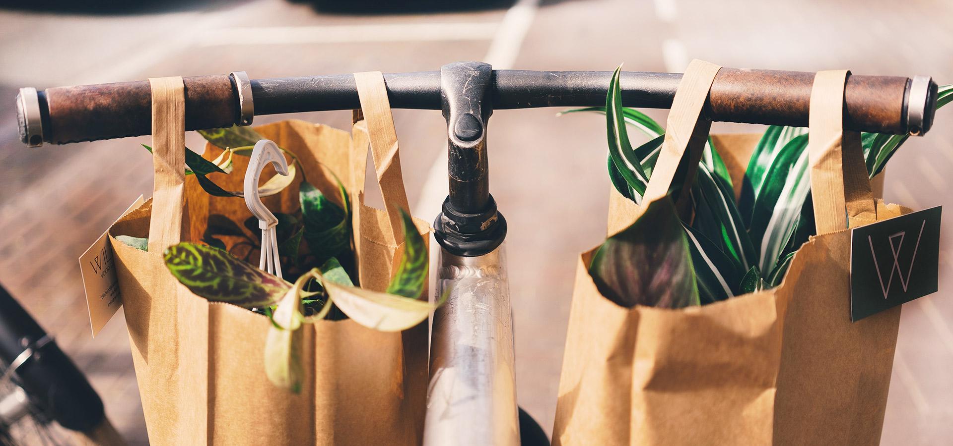 Cykel med påsar med växter hängande från styret