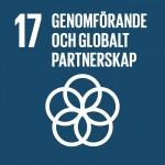 17-genomforande-och-globalt-partnerskap
